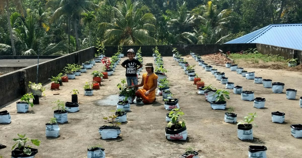 How a Kerala Contractor Converted His Terrace to an Oasis ...