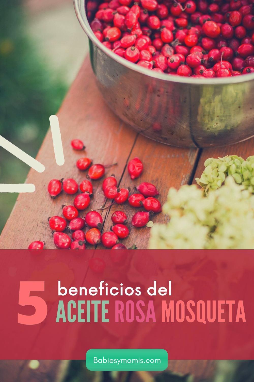 Aceite Rosa Mosqueta 5 Beneficios Para Embarazadas Video En 2020 Aceite Aceites Vegetales Vegetales