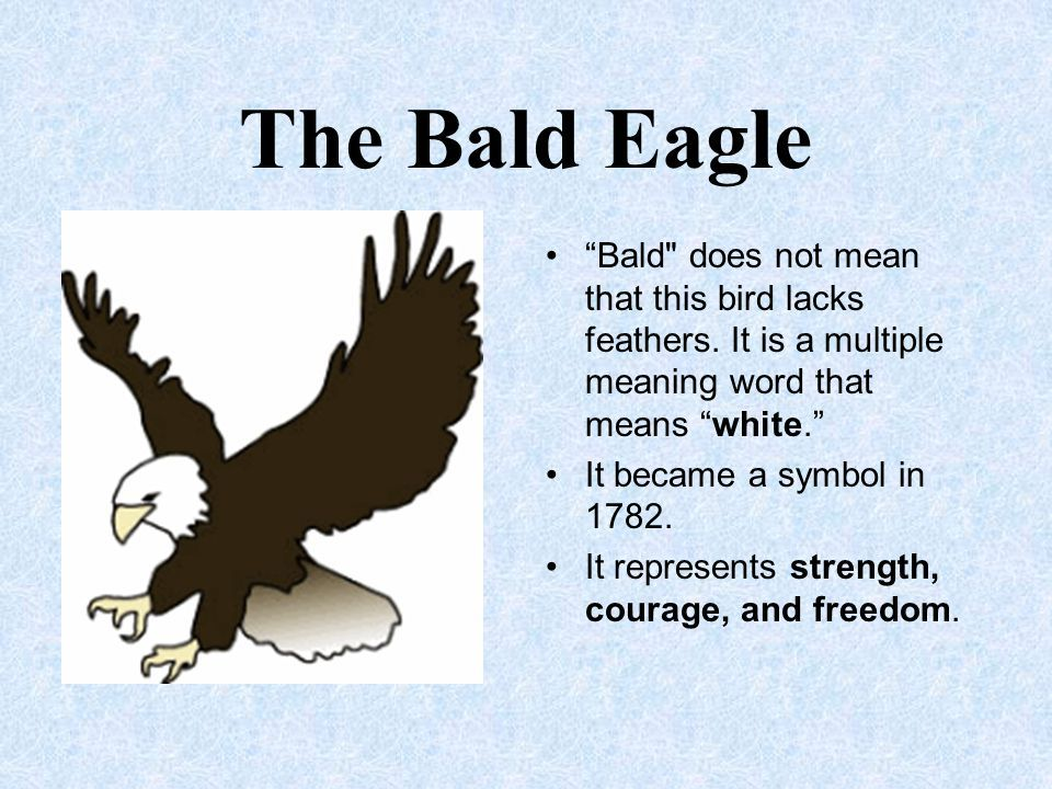 The Eagle Symbol Symbols Pinterest Symbols