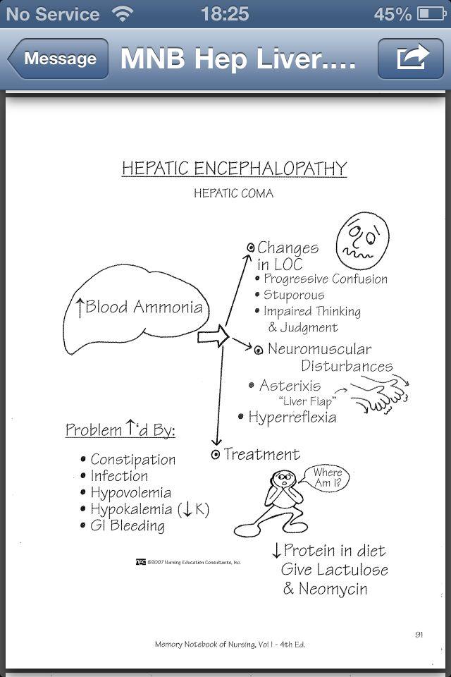Hepatic Encephalopathy Nursing School Study Tools Med Surg