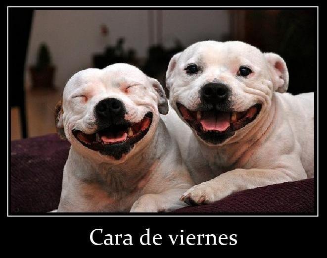 Por fin es viernes!! Si es que nos cambia la cara y se nos llena de felicidad pensando en el fin de semana!!