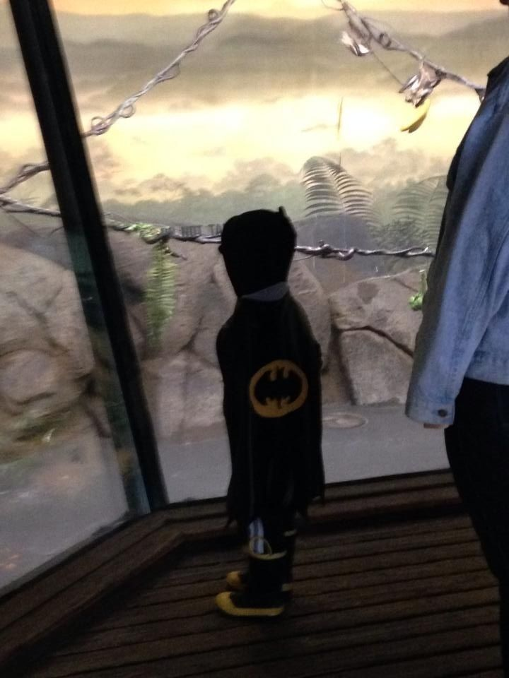 My friend took her son to the bat cave at the zoo, and he insisted on going dressed like this...