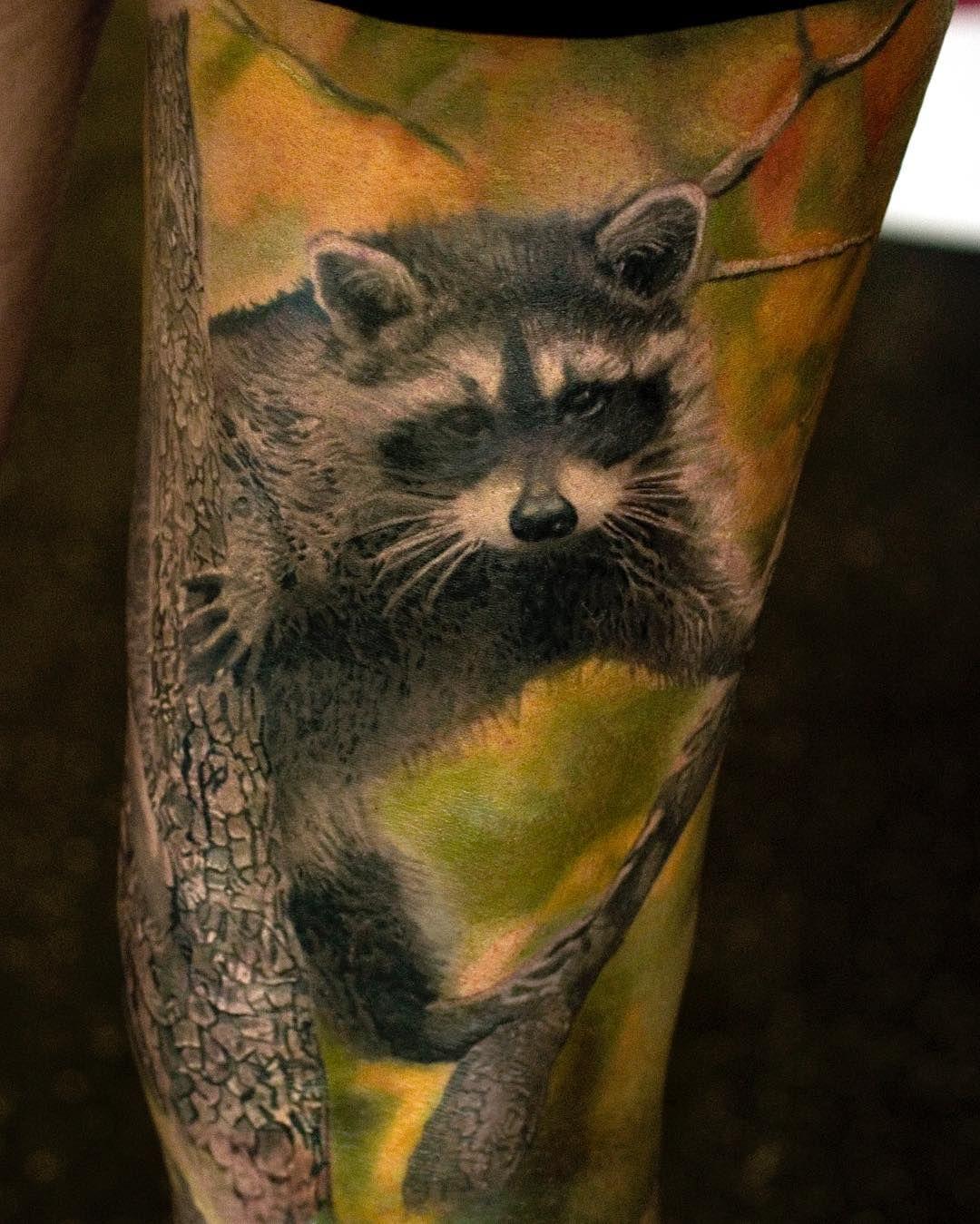 Pin by Jolanta Kelminskaite on newwwww tattoo Raccoon