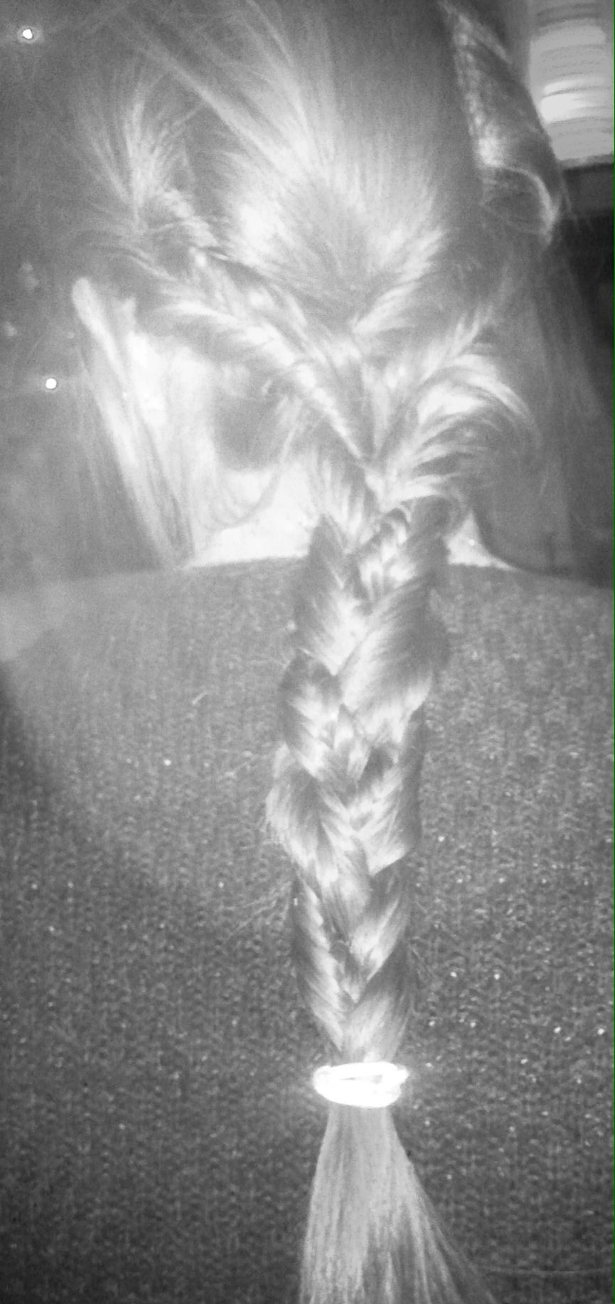 Plaited fishtail