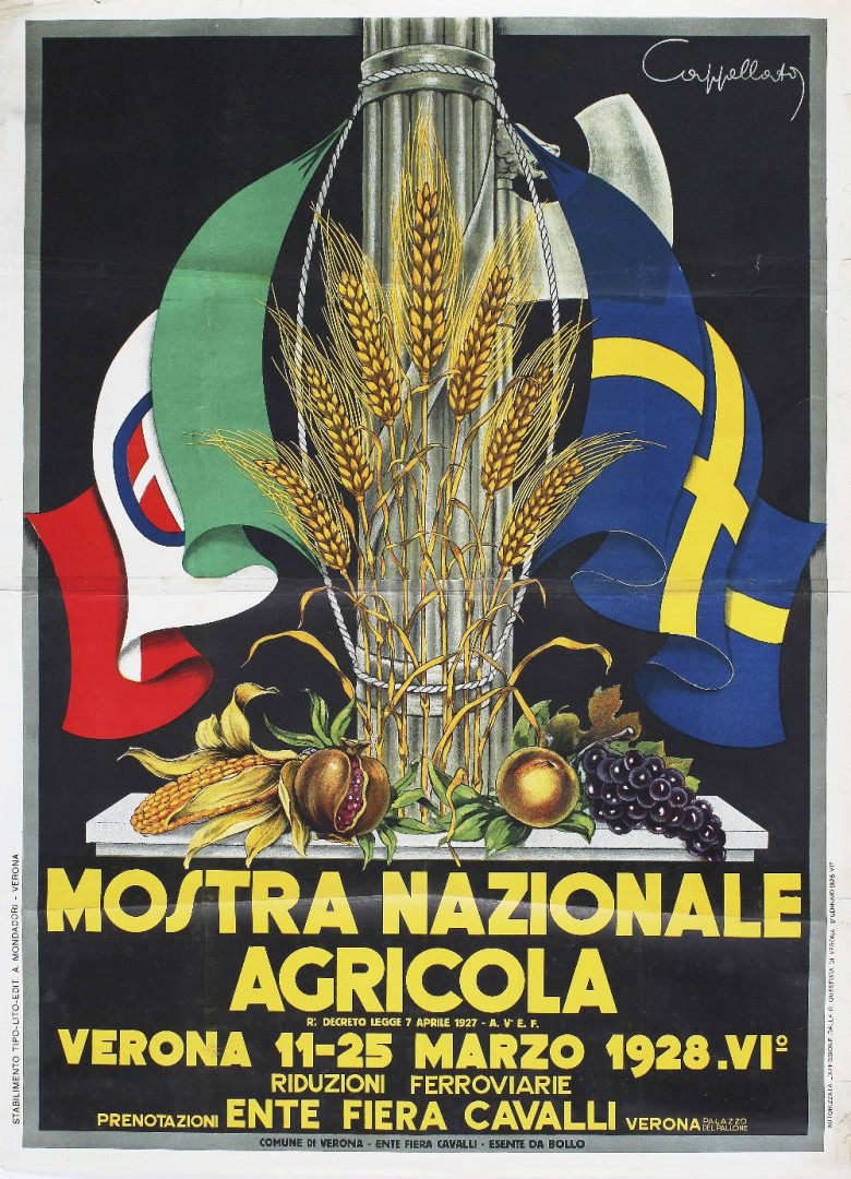 Pin Su Poster Licenta