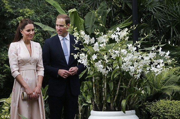 Floral tribute: The Duke and Duchess of Cambridge look at an orchid named after Prince William's mother Diana, Princess of Wales, during their first engagement in Singapore,  2012