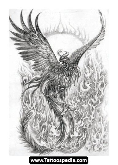 phoenix tattoo designs phoenix tattoo meaning 20. Black Bedroom Furniture Sets. Home Design Ideas