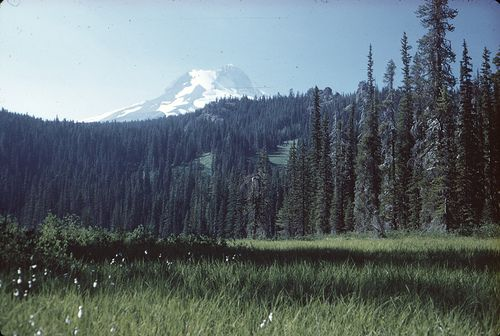 Mt. Hood Oregon. Backpacked all over that mountain for a month and a half. Had an Afghan hound named Bilby with me. When winter came I worked at Mt. Hood Meadows Ski Resort.