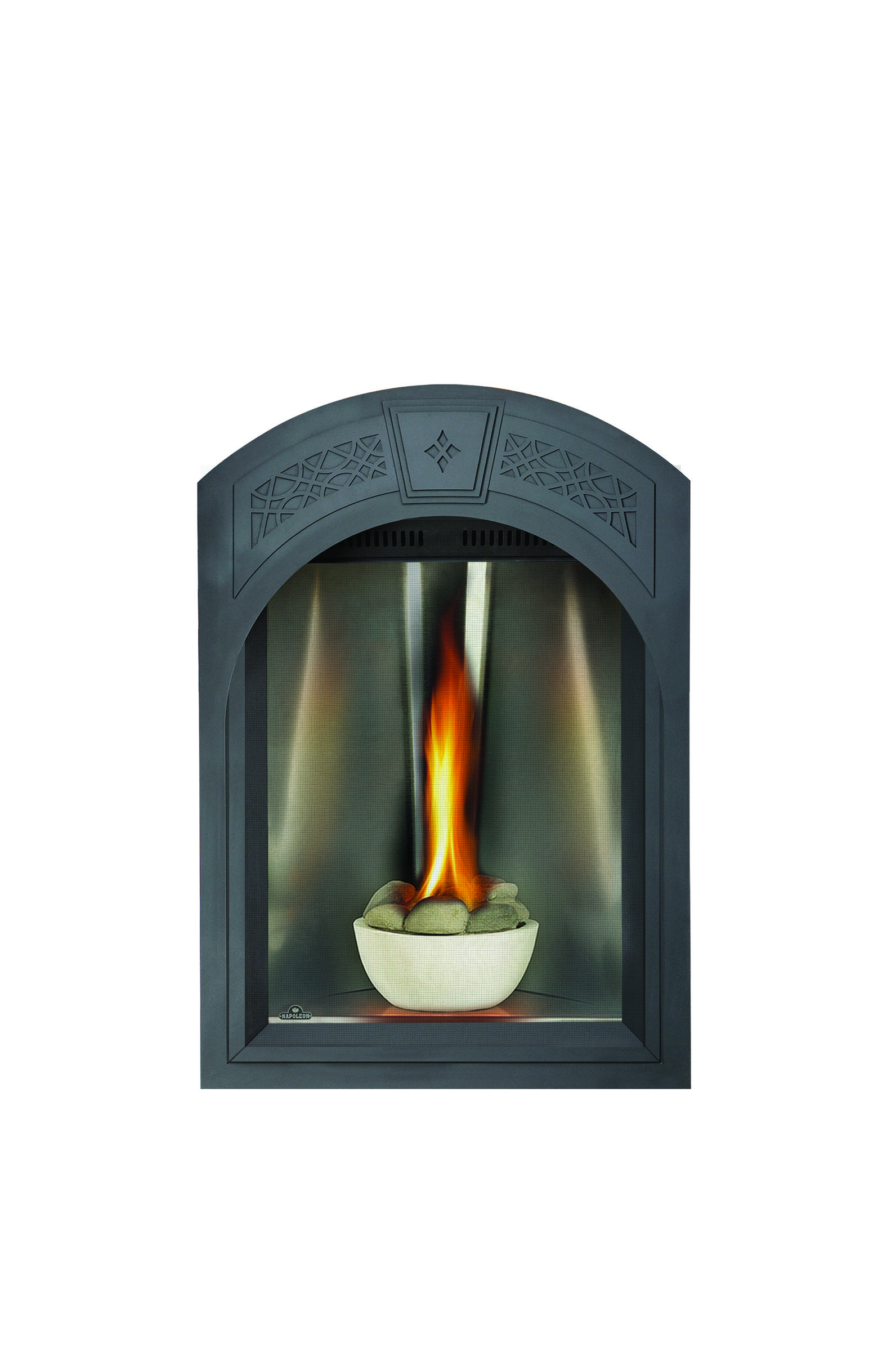 Gas Fireplace Facing Napoleon Tureen Gas Fireplace Combining Style Modernism And