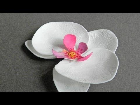 How to make pretty foam paper orchids diy crafts tutorial how to make pretty foam paper orchids diy crafts tutorial guidecentral youtube mightylinksfo