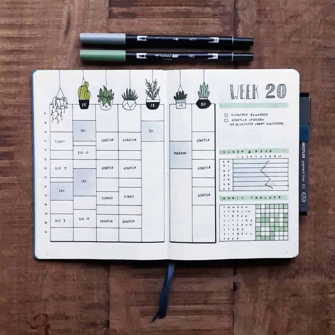 100+ Incredible Cactus Bullet Journal Layouts | My Inner Creative