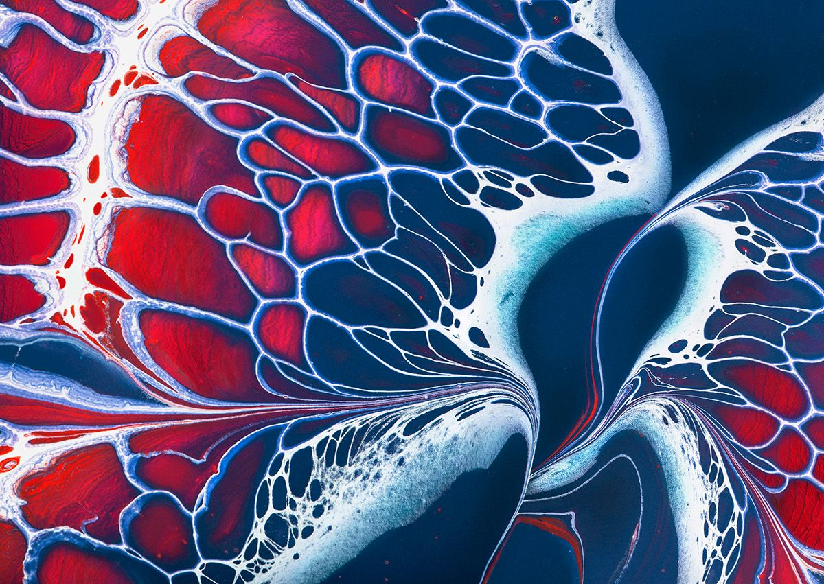 Poured fluid acrylics and ink create a lacy pattern of for How to make fluid acrylic paint