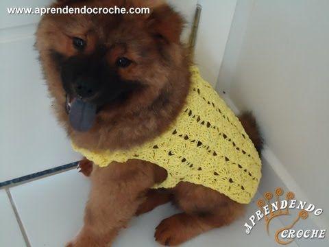 Capinha / Roupinha de Croche para Cachorro Max - Aprendendo Crochê ...