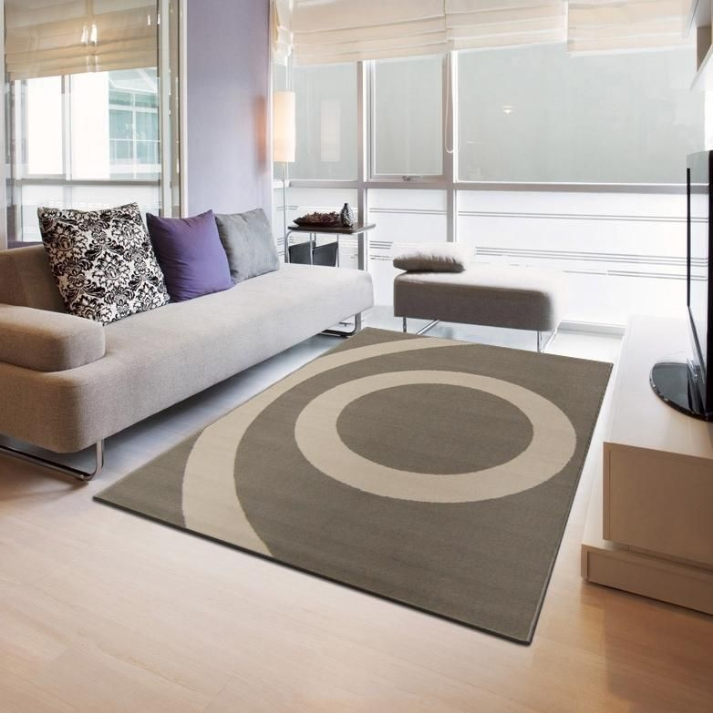 Impressionnant Tapis Salon Taupe Decoration Francaise Pinterest