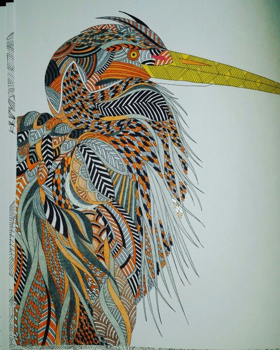 Mr Heron I Think Animal Kingdom