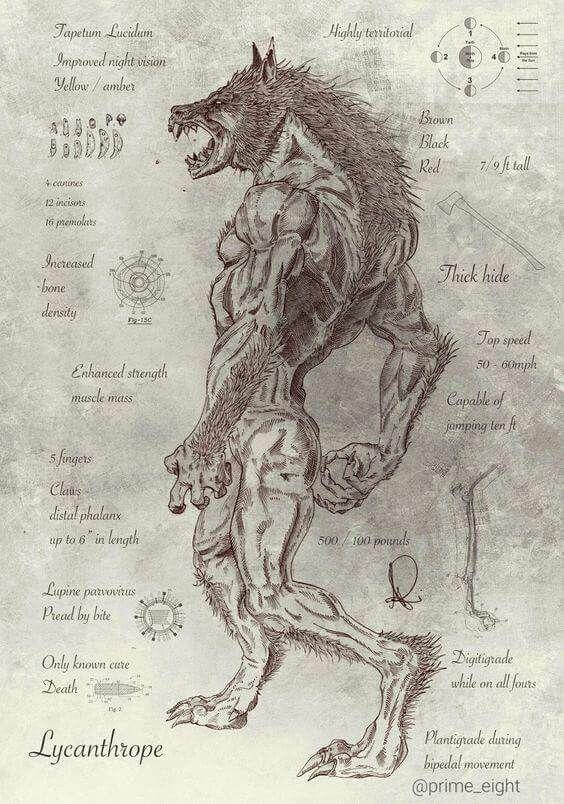 Pin de JC Leiva en WOLF   Pinterest   Me da, Cosas y Hombres lobo