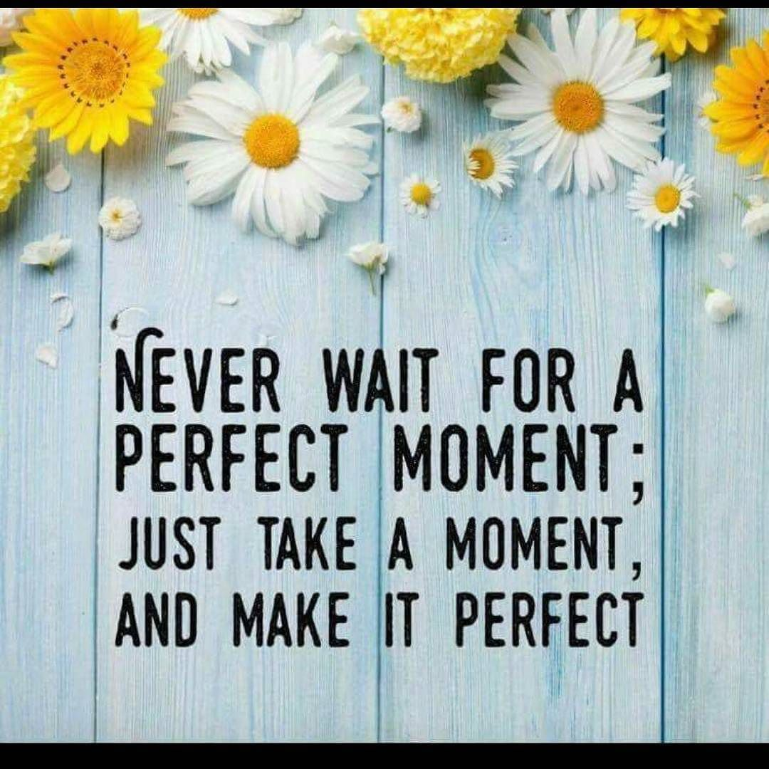 Never wait for a perfect moment; just take a moment and make it ...