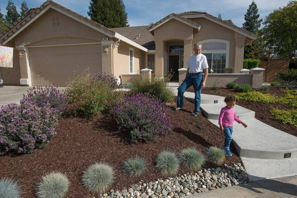 Southern california xeriscape designs google search for Southern california landscaping ideas