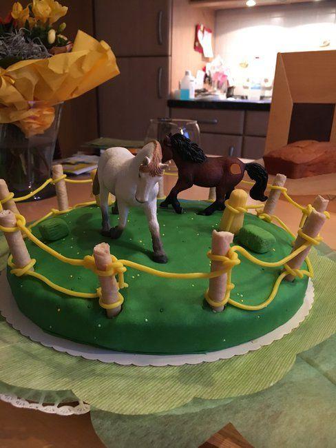 Die Maus hat sich eine pferdetorte zum Geburtstag morgen gewünscht.<br /> Ist zwar keine echte Torte sondern nur Schoko-Flockina-Kuchen mit Himbeeren aufgepimpt aber das war ihr ausdrücklicher Wunsch.<br /> <br /> Wollte nur ein bisschen Lob einheimsen, da Männer bei sowas ja eher sparsam sind.