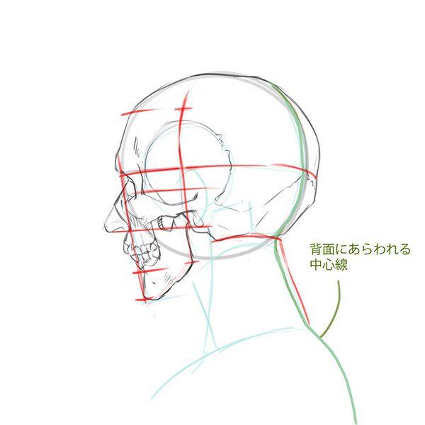 比率のバランスから学ぼう 斜め顔と斜め後ろから見た顔の描き方 いちあっぷ 顔 描き方 スケッチのテクニック 顔の書き方