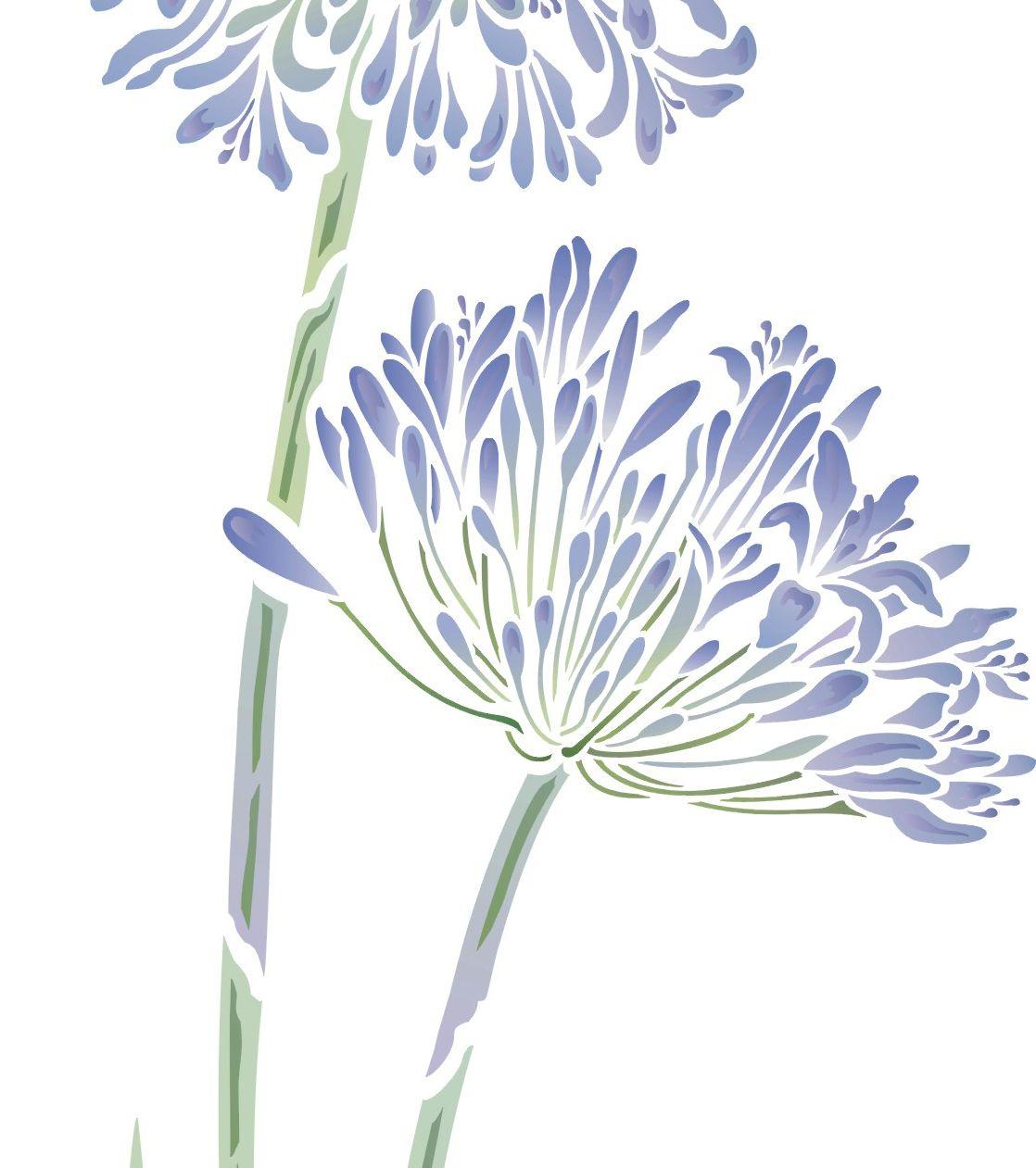 softly stencilled agapanthus stencil   agapanthus flower stencil