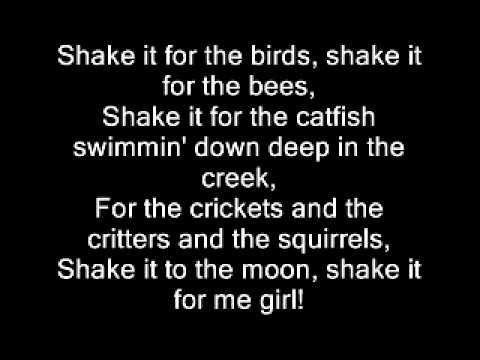 Country Girl Shake It For Me Luke Bryan Lyrics Country Music