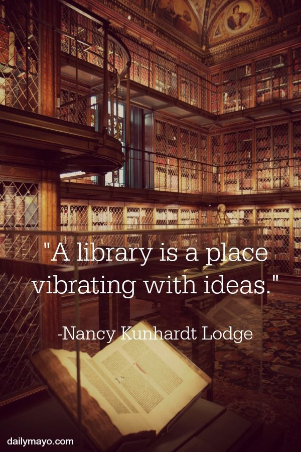 Library Quotes Impressive 20 Quotes About Libraries  Books Library Quotes And Library Books Decorating Inspiration