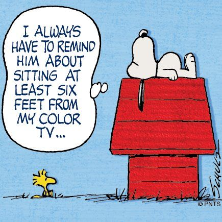 Snoopy. Woodstock .