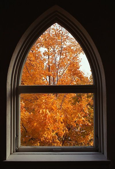 Best view from the window is during the  autumn. #autumn #fall #autumnphotography #leaves