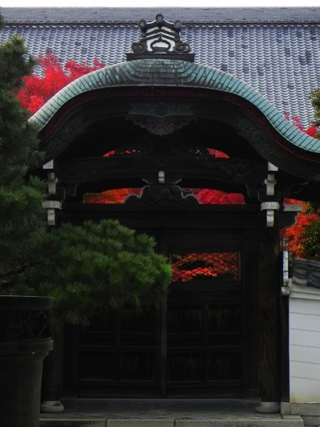 I live in Nishijin | Image Prompt Report on Autumn Leaves, of Kyoto-02 Dec 2011