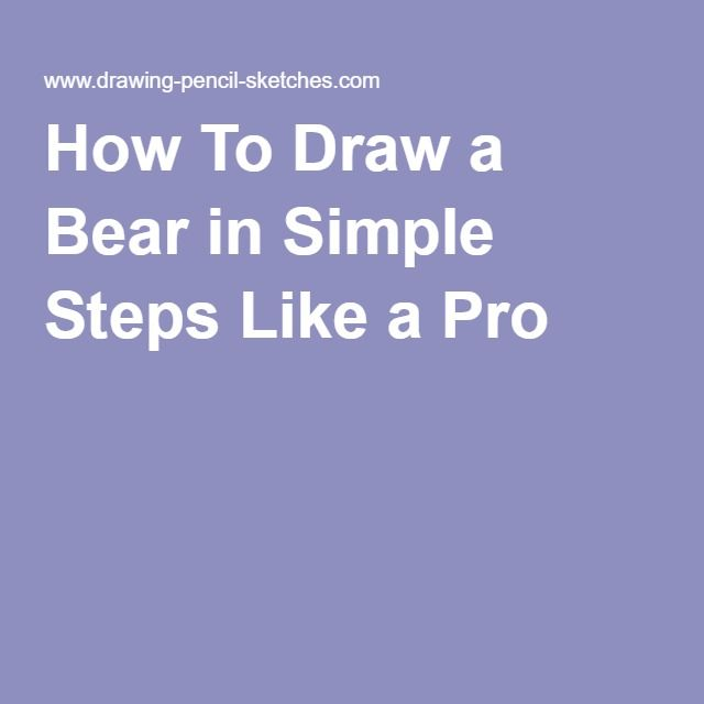 How To Draw a Bear in Simple Steps Like a Pro
