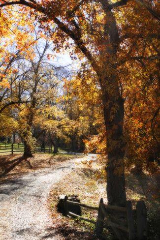 Autumn on Kent Farm IV Photographic Print by Alan Hausenflock - AllPosters.ca