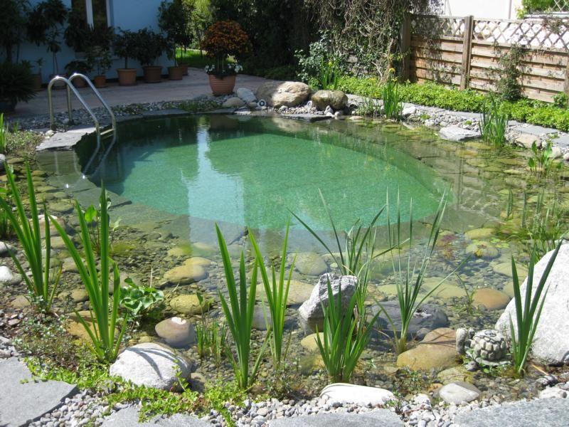 Badeteich Schwimmteich klein #poolimgartenideen