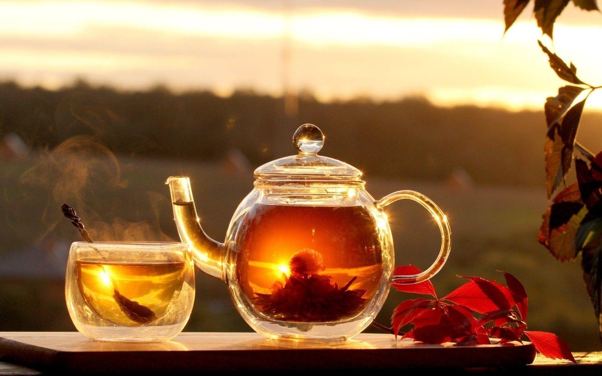 какой чай полезен для желудка