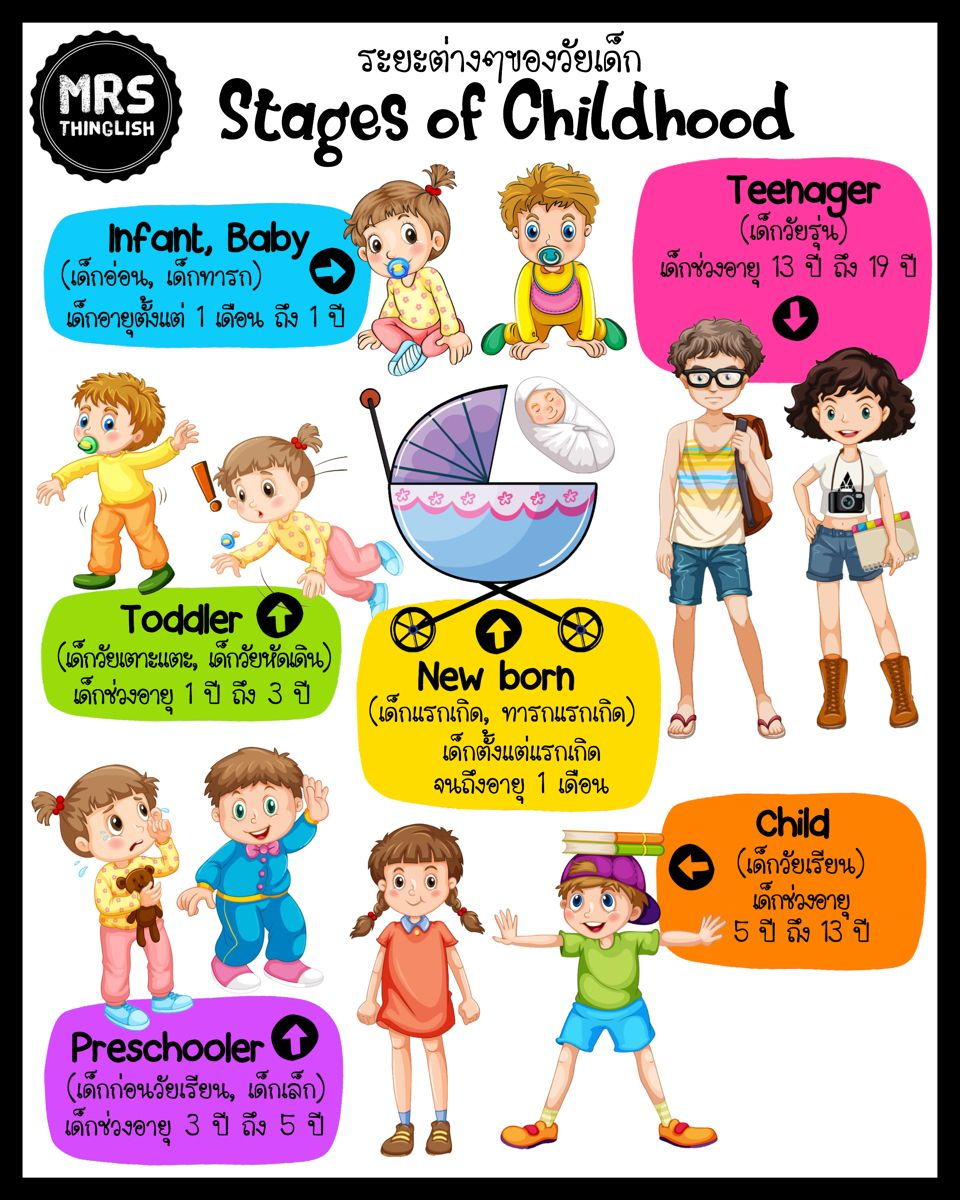 Stages Of Childhood ระยะต างๆของว ยเด ก เร ยนภาษาอ งกฤษ ว ยเด ก การเร ยนร