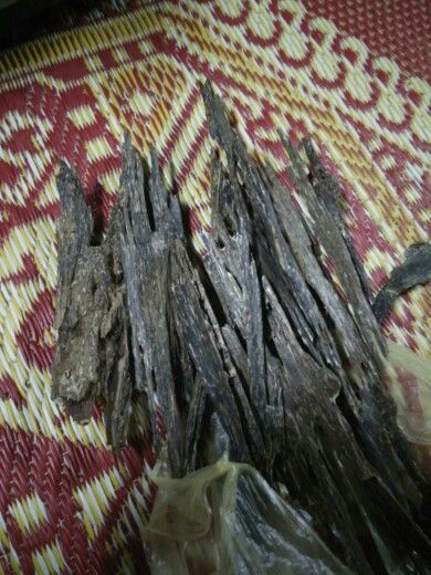 Malaysia supplier and trader for #agarwood #gaharu #jinkoh