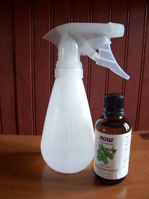 HOMEMADE AIR FRESHENER- 1 c. water, 1/4 c. vinegar, 10 drops of essencial oil (your choice). Shake before each use.