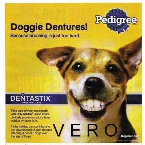 "2010 magazine ad PEDIGREE ""DOGGIE DENTURES"" dog teeth ..."