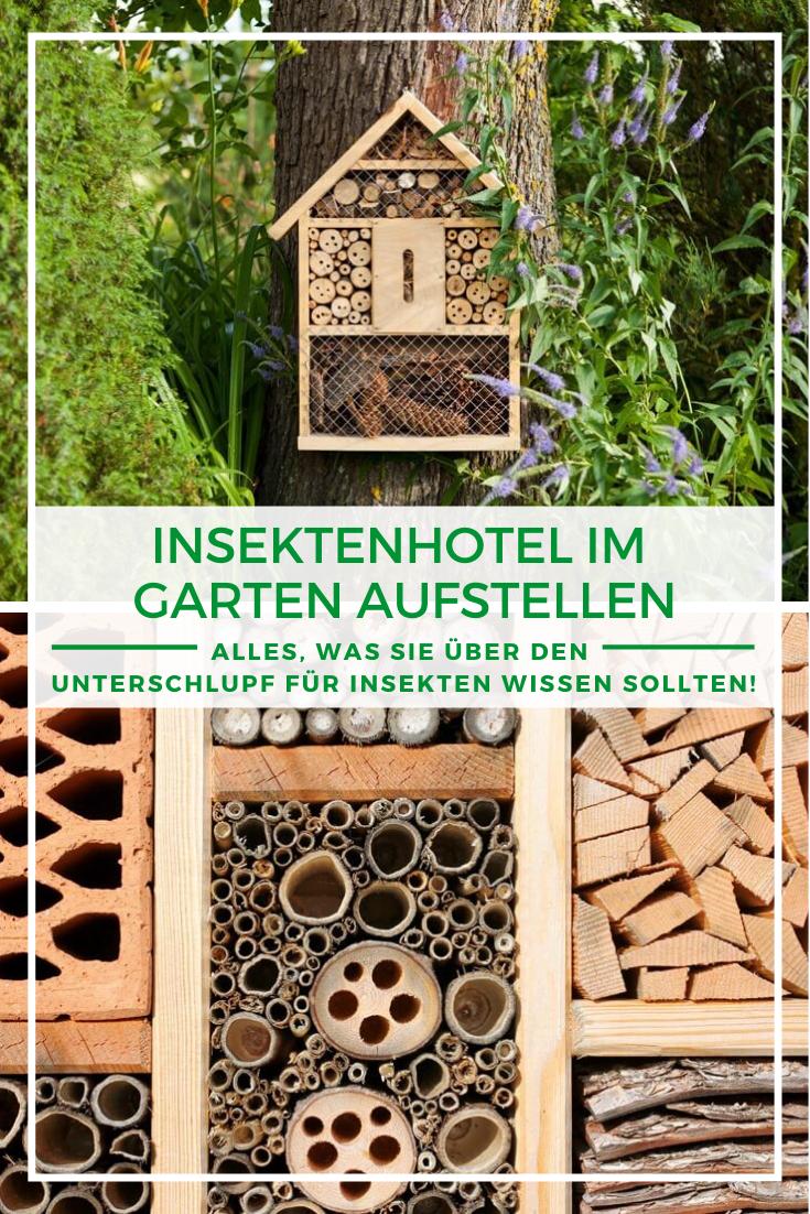 Insektenhotel Aufstellen Wo Wann Wie So Geht S Richtig