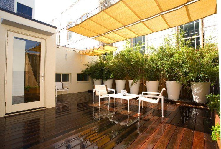 Bambou en pot Рbrise-vue naturel et d̩co sur la terrasse ...