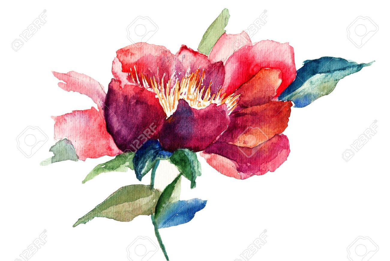 watercolor peony tattoo - Google Search | Awesome Tattoos ...