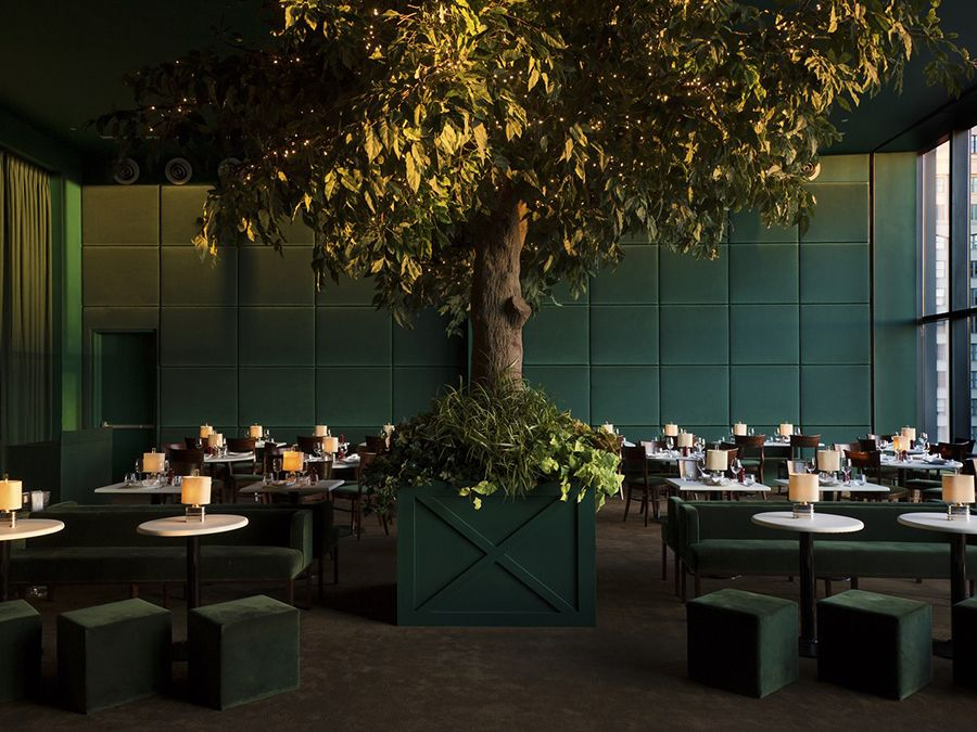 Green Is In With Images Restaurant Design Tree Restaurant