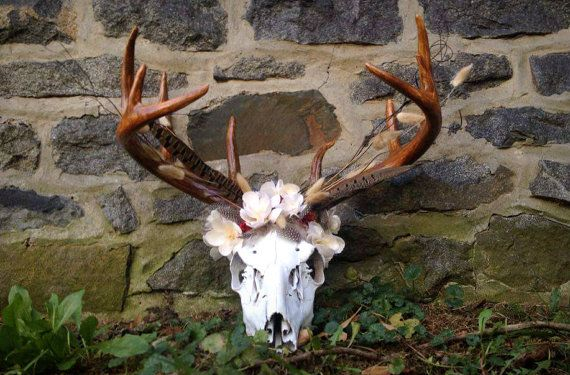 SALE - Deer Skull Mount - European Mount - Wall Art - Skull Art ...