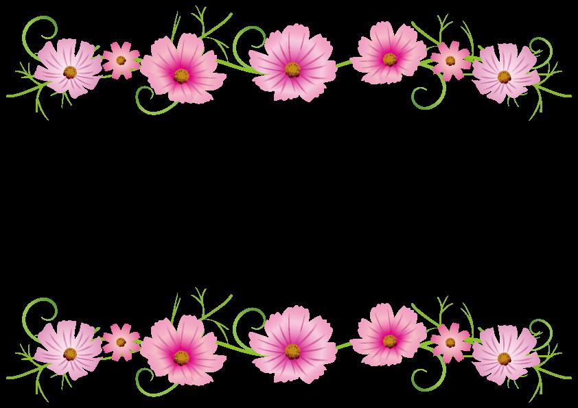 コスモスの花フレーム枠 花 フレーム飾り枠無料秋 花