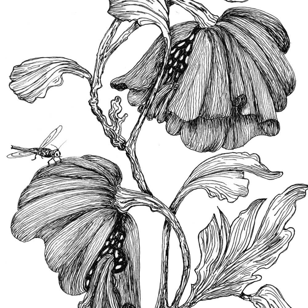 Images for pen and ink drawings of flowers tattoos