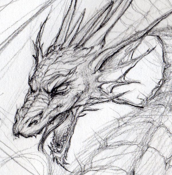 Dragon Head by Loren86.deviantart.com | Creative | Pinterest ...