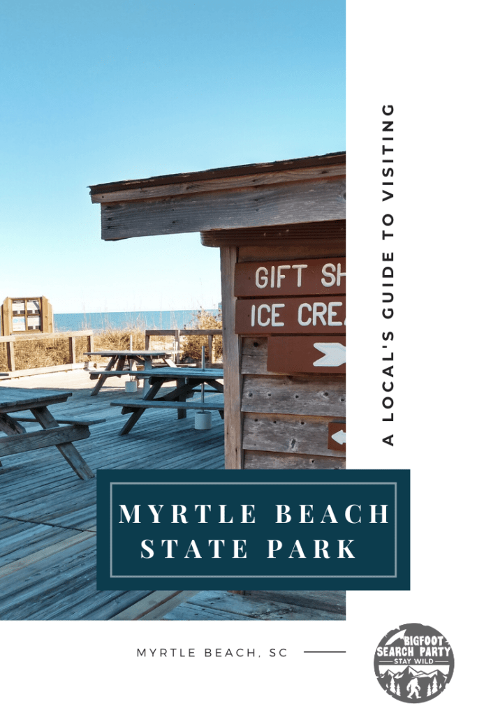 A Local's Guide to Myrtle Beach State Park in 2020