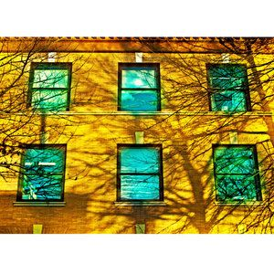 electric windows (photography of Carl Christensen)