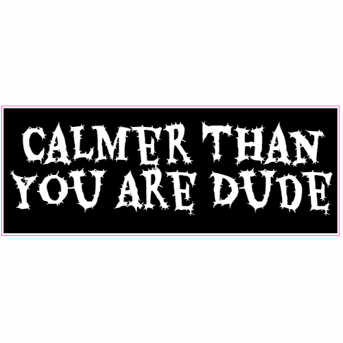 Calmer Than You Are Dude Sticker   Stickers and Decals from
