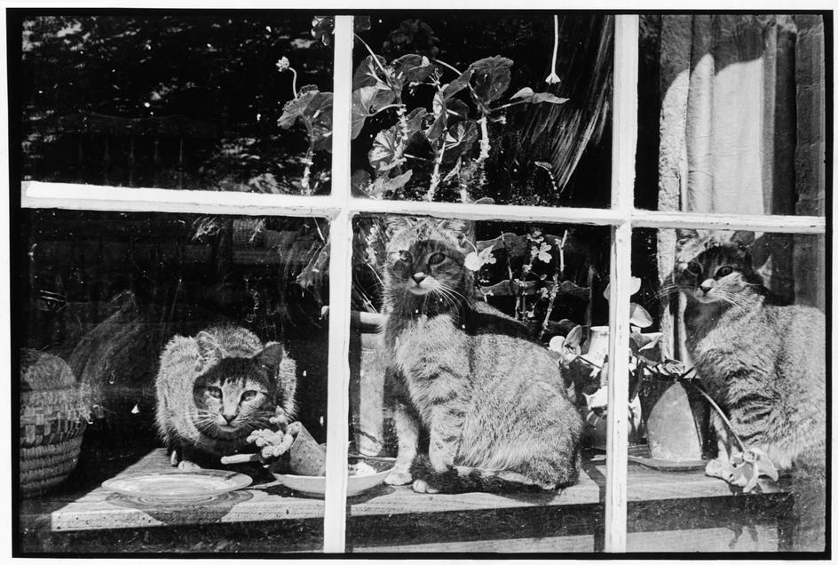Henri Cartier-Bresson 1951